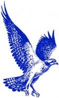 osprey-blue