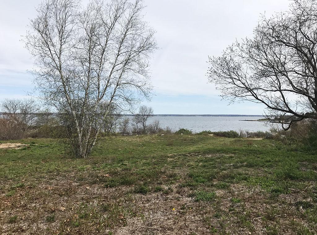 Chocomount Cove Sanctuary