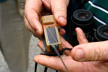 Closeup of Edwin's one-ounce transmitter. 5/11/13. Photo by John Ski.